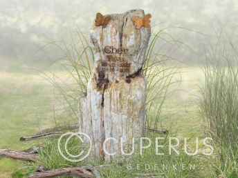Grafmonument versteend hout